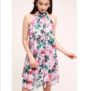 Eliza J Floral Grandiflora Swing Dress